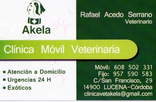 Imagen de AKELA, Clínica Veterinaria