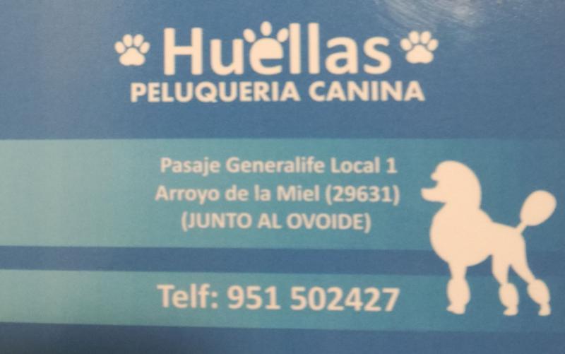 Imagen de Peluquería Canina Huellas