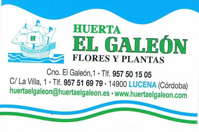 Imagen de HUERTA EL GALEÓN