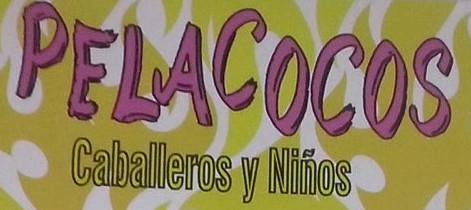 Imagen de Pelacocos