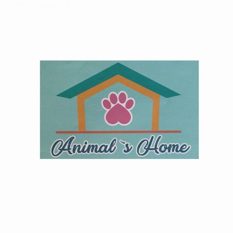 Imagen de Animal`s Home