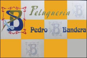 Imagen de Peluqueria PEDRO BANDERA