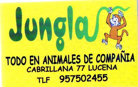 Imagen de JUNGLA